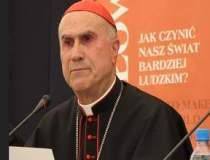 """""""Interimat"""": Cardinalul..."""