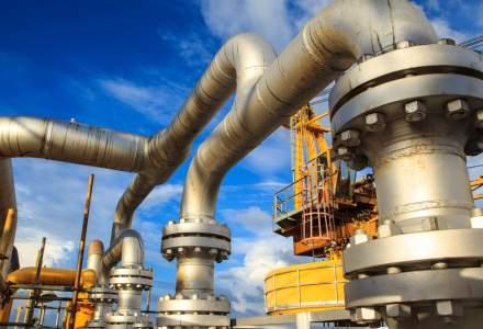 Romgaz plateste 12,5 mil. euro pentru 20% dintr-un producator de gaze din Grecia