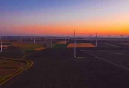 [FOTO] In vizita la cel mai mare parc eolian pe uscat din Europa