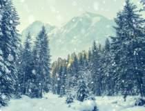 Zapada de 4 cm in nordul tarii