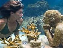 Muzeu sub apa sau localitate...