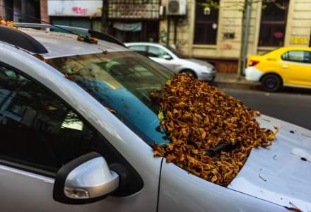 Ce efecte ar putea avea introducerea taxei de poluare Oxigen