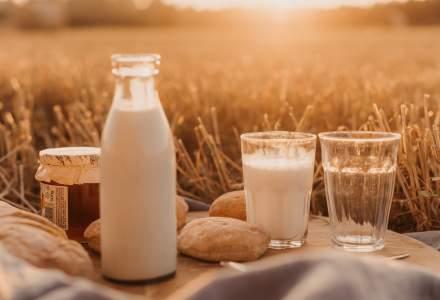Veniturile sectorului de fabricare a produselor lactate si a branzeturilor au scazut cu 18% in 2018, fata de anul precedent