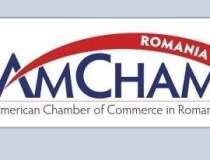 AmCham: Modificarea Legii...