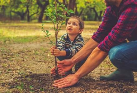 Un rival Revolut planteaza copaci la fiecare 100 de euro pe care ii cheltui cu noul lor card