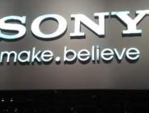 Zeci de directori ai Sony...