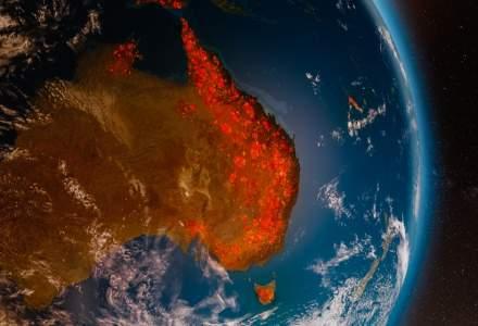 "New York Times: Australia ar putea deveni un ""Cernobil climatic"". Incendiile au ars deja o suprafata mai mare decat Elvetia"