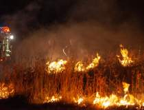 Incendii in Australia: 24 de...