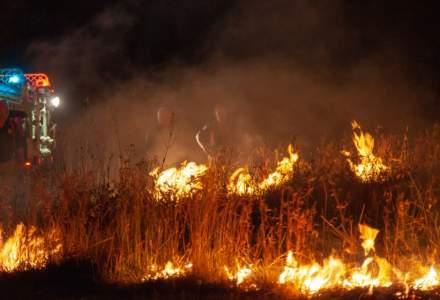 Incendii in Australia: 24 de morti si peste cinci milioane de hectare de teren distruse de flacari