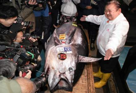 Un ton rosu urias a fost vandut cu 1,8 milioane de dolari la licitatie in Japonia