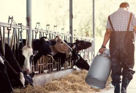 Patria Credit obtine un nou imprumut de la EFSE pentru a finanta fermierii si antreprenorii din mediul rural