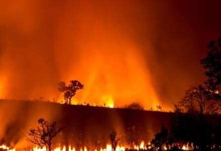 """Australia depaseste o zi critica si se confrunta cu un nou """"mega-incendiu"""""""