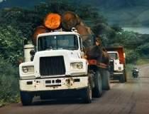 Soferii de camioane vor bloca...