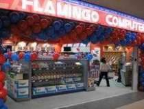 Flamingo International...