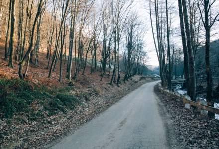 Cele mai urgente probleme din Romania: educatia, sanatatea, justitia, munca si infrastructura