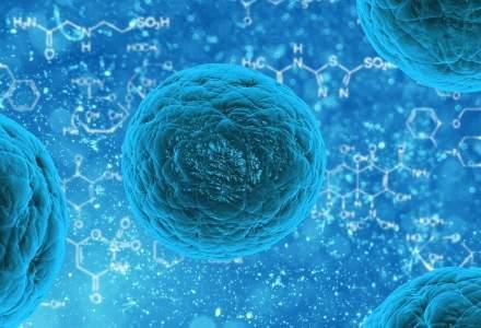 Noul coronavirus din China: Specialistii vor propune Ministerului Sanatatii un set de masuri