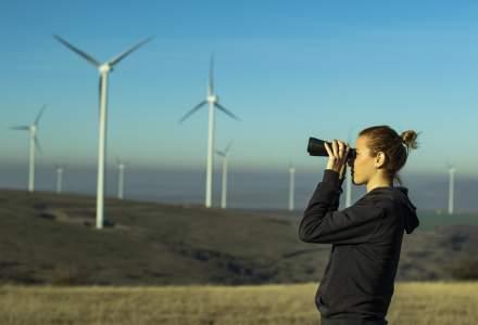 (P) Contributia Blumenfield pentru protejarea mediului in care traim