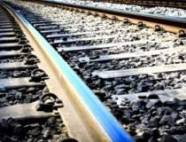 Privatizarea CFR in aer:...