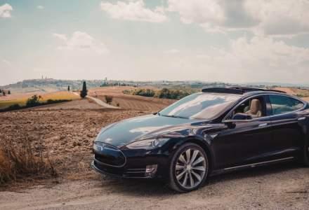 Tesla a reluat tăierea copacilor pentru construcţia uzinei din Germania