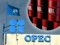 Iranul cere OPEC sa scada...