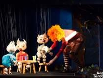 Teatrul Țăndărică va...