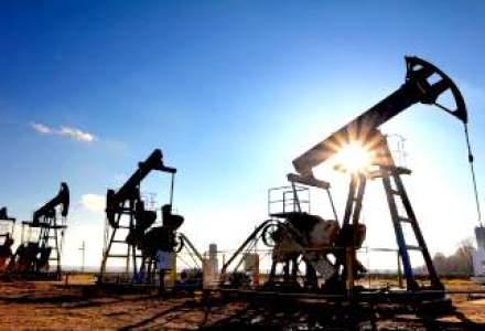 ANRM: Romania are unele dintre cele mai mai mari rezerve de gaze de sist