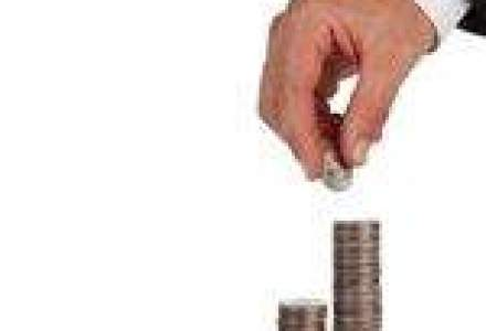 Cele mai atractive ramuri economice pentru investitii straine directe in Romania