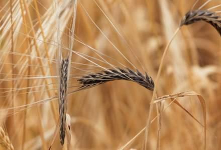 Ministrul Agriculturii asigură fermierii afectați de secetă că vor primi despăgubiri