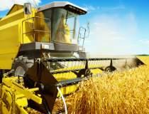Operator agricol: Daca statul...