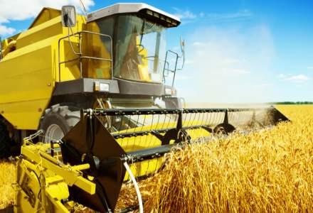 Operator agricol: Daca statul vrea securitate alimentară, să cumpere marfa în loc să interzică toate exporturile