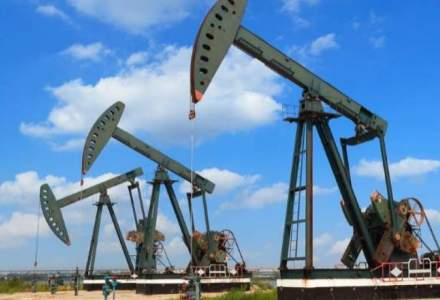Ministrul Economiei: Pe termen scurt, România nu va fi afectată de scăderea drastică a preţului petrolului din Statele Unite
