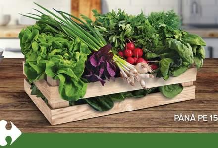 Carrefour lansează o lădiță cu legume, pentru a susține micii producători agricoli