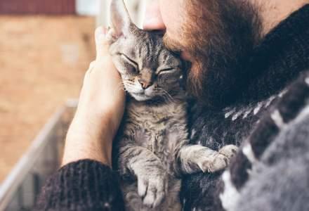 Franța le cere bolnavilor de COVID-19 să stea departe de pisicile lor