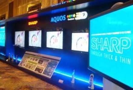 Semne de slabiciune pe piata LCD-urilor: livrarile vor scadea cu pana la 15% in acest an