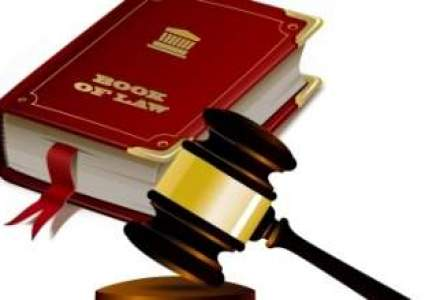Comisia de la Venetia asteapta pana la finalul lunii proiectul de revizuire a Constitutiei