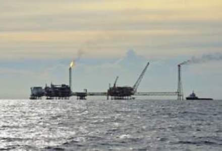 Nita: Exploatarea gazelor din Marea Neagra, obiectiv strategic