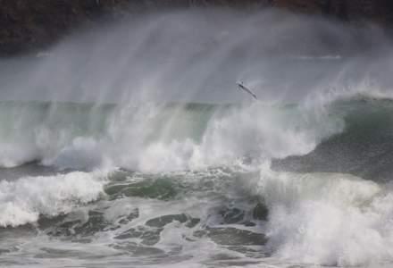 O uriaşă placă tectonică de sub Oceanul Indian se rupe în două