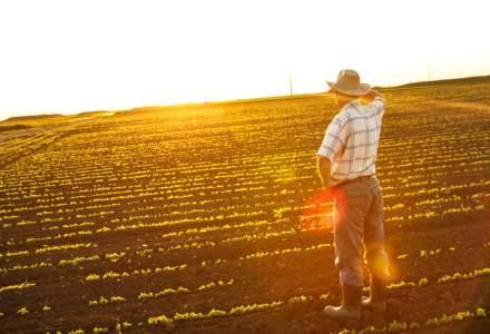 Ministrul Agriculturii: În unele județe, apar suprafețe afectate de secetă mai mari decât s-a însămânțat