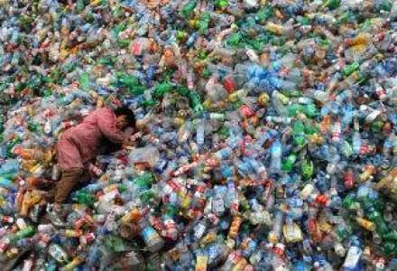 Ce arunca romanii la gunoi: Aproximativ 40% din deseuri reprezinta materie prima pentru economia tarii