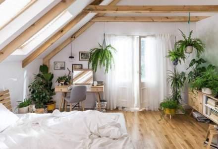 Retailerul de mobilă Scandinavian Design House a lansat magazin online