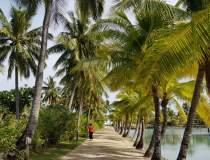 Fiji se declară ţară liberă...