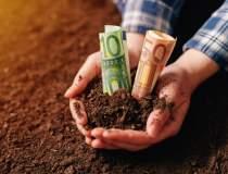 Este agricultura o afacere de...