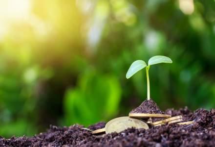 CEC Bank: În 2020, agricultura s-a păstrat pe primul loc în ceea ce privește volumele finanțate