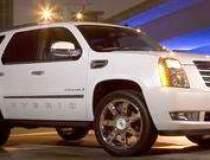 Radacini Motors delivers...