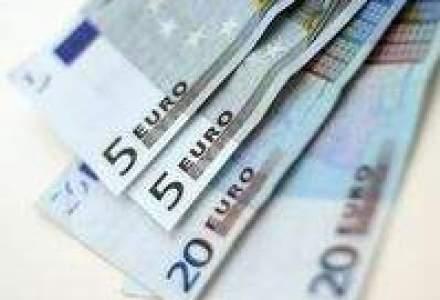 Cat a pierdut leul in fata euro, in 2008