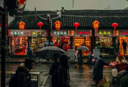 Târgul anual de carne de câine s-a deschis în China, activiştii speră că pentru ultima oară