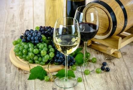 Parteneriat în industria vinului: trei crame concurente lansează platforma treipentruvin.ro