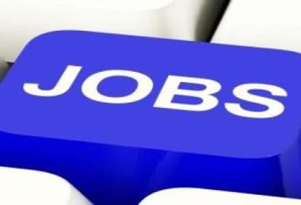 Cum poti aplica pentru peste 3.000 de job-uri