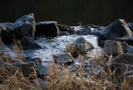 Organizații de mediu avertizează asupra poluării: Măşti şi mănuşi de protecţie au fost găsite în şapte fluvii europene