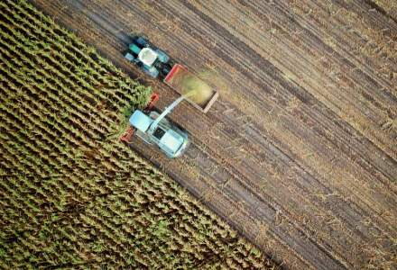 Ministerul Agriculturii alocă peste un miliard de lei pentru despăgubirea fermierilor afectați de secetă